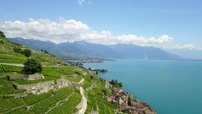 Lavaux, Switzerland. Aerial footage flying over Lavaux vineyards in Switzerland featuring the charming village of Saint Saphorin stock footage