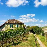 Chalet in Lavaux Vineyard Terraces hiking trail Lavaux Oron. Lavaux, Switzerland - August 30, 2016: Chalet in Lavaux Vineyard Terraces hiking trail, Lavaux-Oron stock photography