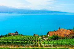 Lavaux, Switzerland - August 30, 2016: Chalets near Vineyard Terrace hiking trail of Lavaux, Lake Geneva and Swiss mountains,. Lavaux-Oron district in royalty free stock photography