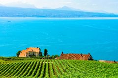 Lavaux, Switzerland - August 30, 2016: Chalets near Vineyard Terraces hiking trail of Lavaux, Lake Geneva and Swiss mountains,. Lavaux-Oron district stock image