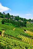 Lavaux, Switzerland - August 30, 2016: Countryside at Lavaux Vineyard Terraces hiking trail, Lavaux-Oron district, Switzerland. Lavaux, Switzerland - August 30 royalty free stock photography