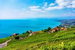 Lavaux, Switzerland - August 30, 2016: Landscape of Lavaux Vineyard Terrace hiking trail, Lake Geneva and Swiss mountains, Lavaux-. Oron district, Switzerland royalty free stock image