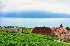 Lavaux, Switzerland - August 30, 2016: Landscape of Lavaux Vineyard Terraces hiking trail, Lake Geneva and Swiss mountains, Lavaux. Oron district in Switzerland stock photo
