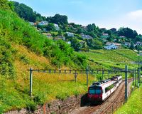 Lavaux, Switzerland - August 30, 2016: Running train at Lavaux Vineyard Terrace hiking trail, Lavaux-Oron district, Swiss. Lavaux, Switzerland - August 30, 2016 stock photo