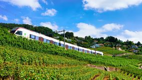 Lavaux, Switzerland - August 30, 2016: Running train near Lavaux Vineyard Terrace hiking trail, Lavaux-Oron district, in Swiss. Lavaux, Switzerland - August 30 stock images