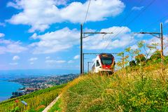 Lavaux, Switzerland - August 30, 2016: Running train in Lavaux Vineyard Terraces hiking trail at Lake Geneva and Swiss mountains,. Lavaux-Oron district stock photo