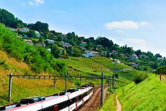 Lavaux, Switzerland - August 30, 2016: Running train at Lavaux Vineyard Terraces hiking trail, Lavaux-Oron district, Swiss. Lavaux, Switzerland - August 30, 2016 royalty free stock images