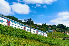 Lavaux, Switzerland - August 30, 2016: Running train in Lavaux Vineyard Terraces hiking trail, Lavaux-Oron district of Swiss. Lavaux, Switzerland - August 30 royalty free stock photos