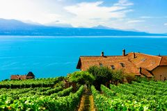 Lavaux, Switzerland - August 30, 2016: Swiss Chalets near Vineyard Terrace hiking trail of Lavaux, Lake Geneva and Swiss mountains. Lavaux-Oron district royalty free stock photography