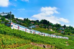 Lavaux, Switzerland - August 30, 2016: Train at Lavaux Vineyard Terraces hiking trail, Lavaux-Oron district of Switzerland. Lavaux, Switzerland - August 30, 2016 royalty free stock image
