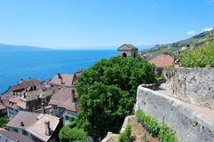 Lavaux Vineyard Terraces Royalty Free Stock Photos