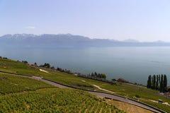 Lavaux vineyards on Lake Geneva, Switzerland Stock Images