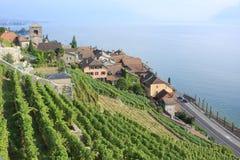 Lavaux Weinberge auf dem Ufer von See Genf Stockfotos
