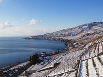 Lavaux Vineyards in Switzerland in Winter with Snow Stock Photography