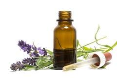Lavendelöl, blühende Niederlassungen und eine Flasche mit Tropfenzähler isola Stockfotografie