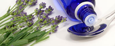 Lavendel Royalty Free Stock Image