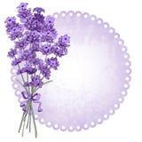 Lavendel stock illustratie