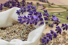 Lavendel 免版税库存图片