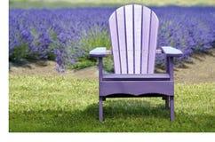 Lavendel Adirondack-Stuhl vor Lavendel-Feld Stockfoto