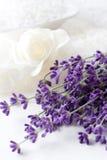 Lavendel Anlage und bathsalt Lizenzfreies Stockbild