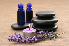 Lavendel aromatherapy Stockbild