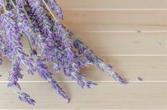 Lavendel auf hölzernem Hintergrund Stockbilder