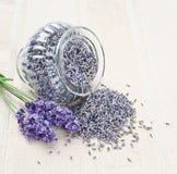 Lavendel blüht frisches und trockenes stockbilder