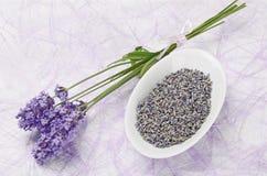 Lavendel blüht frisches und trockenes Lizenzfreie Stockbilder
