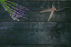 Lavendel blüht, Rosmarin, Minze, Thymian, Melisse mit alten Scheren auf einem schwarzen Holztisch Gebranntes Holz Badekurort und  Lizenzfreie Stockbilder
