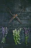 Lavendel blüht, Rosmarin, Minze, Thymian, Melisse mit alten Scheren auf einem schwarzen Holztisch Gebranntes Holz Badekurort und  Stockbilder