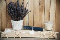 Lavendel in den Töpfen mit Starfish Stockfotografie