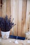 Lavendel in den Töpfen mit Starfish Stockfotos