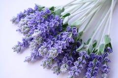 Lavendel die op lijst ligt Stock Fotografie