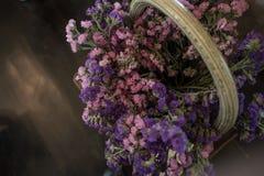Lavendel in einem Weidenkorb stockbilder