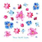 Lavendel en blauwe ornamenten vector illustratie