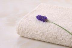 Lavendel en handdoek Royalty-vrije Stock Foto