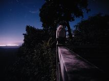 Lavendel för stjärnklar himmel för natt härlig arkivbild