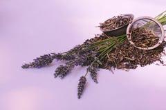 Lavendel: frisch u. Tee Stockbild