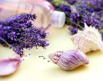 Lavendel i brunnsort Arkivbilder