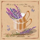 Lavendel i en porslinkopp Arkivbild