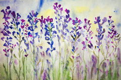 Lavendel i fältet Akvarellmålning Royaltyfria Foton