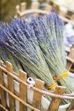 Lavendel i korg Royaltyfri Fotografi