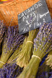 Lavendel i marknad i Gordes Provence royaltyfri bild