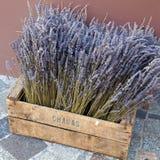 Lavendel im Fach Lizenzfreies Stockfoto