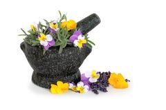 Lavendel-Kraut-und Viola-Blumen stockbilder