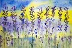 Lavendel med blått- och gulingbakgrund Arkivfoto