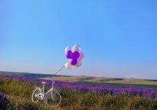 lavendel met huwelijks witte fiets royalty-vrije stock afbeeldingen
