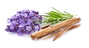 Lavendel mit Zimt Lizenzfreie Stockfotos