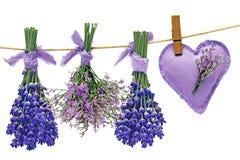 Lavendel och ser lavendel Royaltyfria Bilder