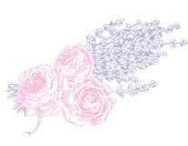 Lavendel & rosor vektor illustrationer